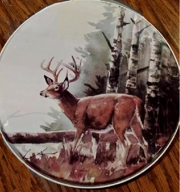 Deer Lodge/cabin Stove Metal Burner Covers