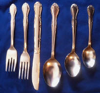 Elegance Stainless Steel Flatware Service for 12