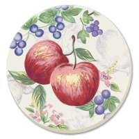 Apple Corelle Coordinate Chutney Fruit Coaster Set of 8