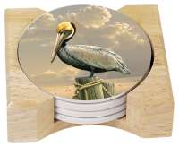 Coastal Beach Pelican 4 Stone Coasters & Wood Holder
