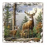 * Morning-Lodge/Cabin Wildlife Cork-Backed Tile Trivets