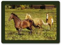 4 Cork Backed Hardboard Placemats Horses Romping