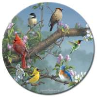 A Glass LazySusan Turntables Floral Wildlife Songbirds