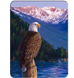 Glass Cuttingboard Serving Tray  Wildlife Sunset Eagle