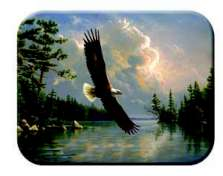 Eagle - Bird Lodge Cabin Glass Cuttingboard Serving Tray
